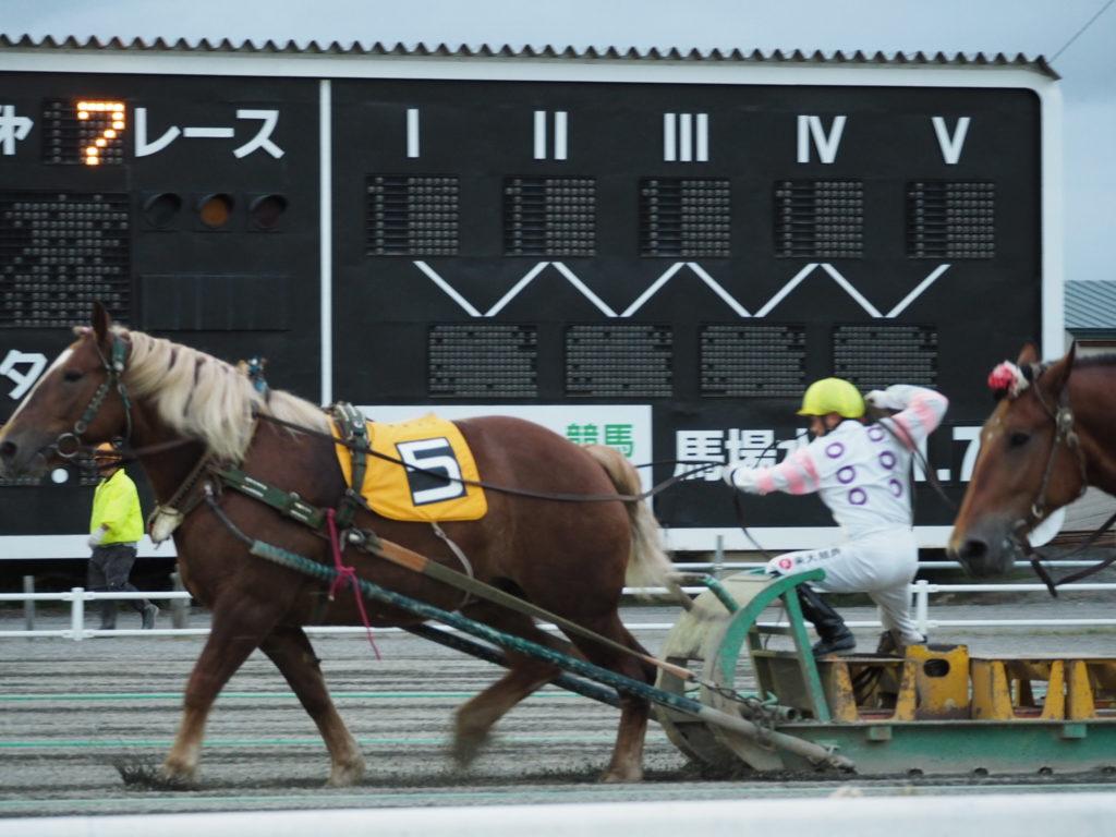 ばんえい競馬3