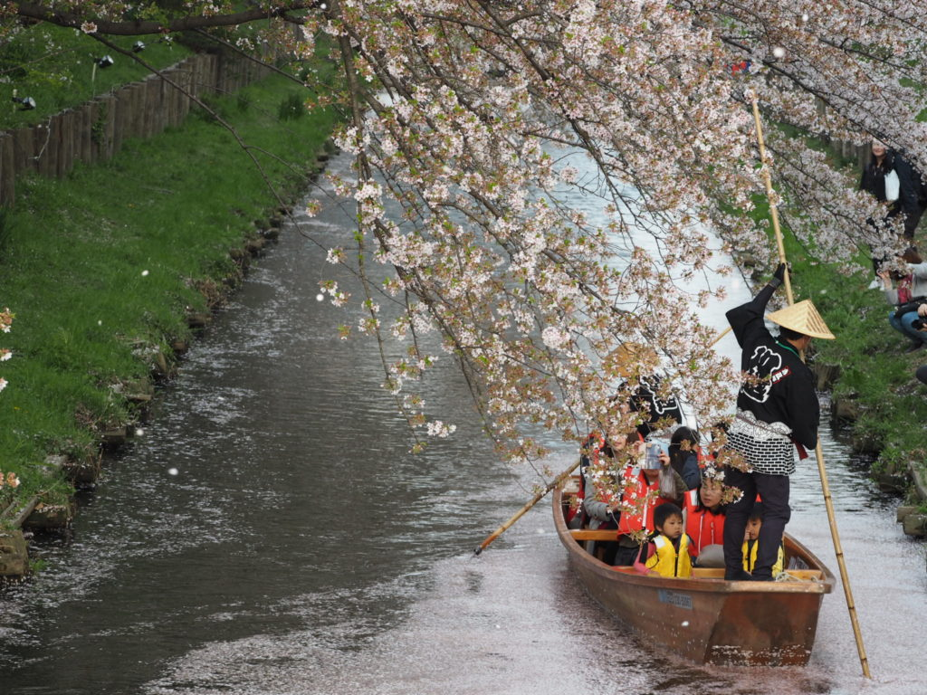 小江戸川越春まつり1