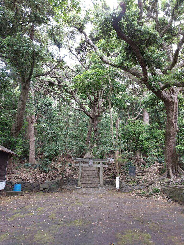 大宮神社5