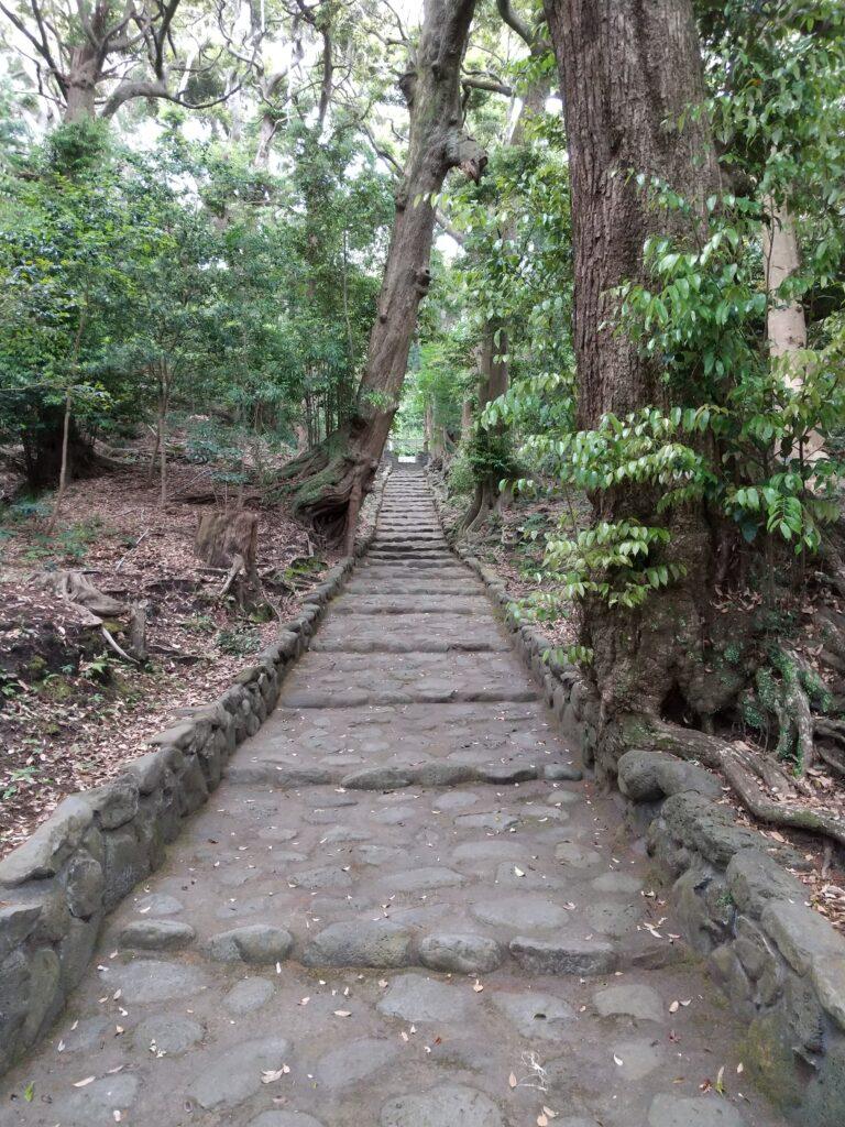 大宮神社6