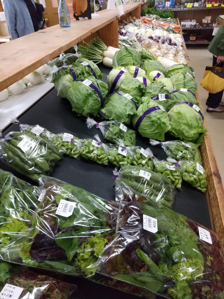 大島の野菜